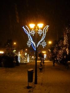 parc Oradea5