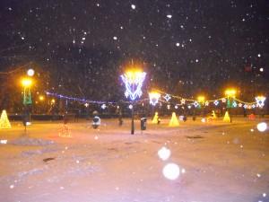 parc Oradea6