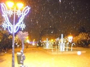 parc Oradea7