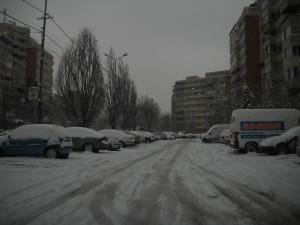 Iarna Oradea 19012013 1
