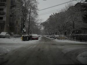 Iarna Oradea 19012013 3