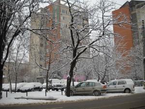 Iarna Oradea 19012013 6