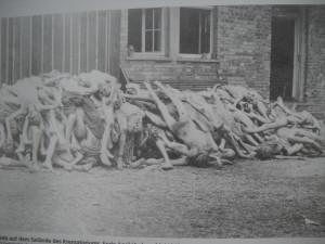 Lagarul de la Dachau - cadavre foto