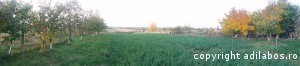 Foto panoramica by LG Optimus G E975