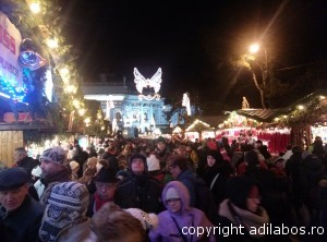 targul de Craciun de la Viena 2013 13