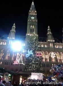 targul de Craciun de la Viena 2013 16