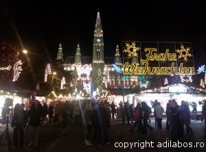 targul de Craciun de la Viena 2013 19