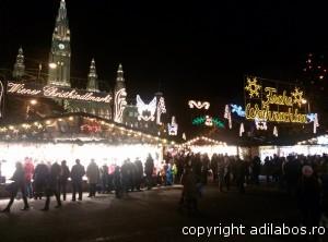 targul de Craciun de la Viena 2013 3