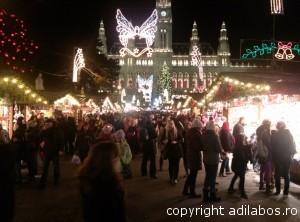 targul de Craciun de la Viena 2013 4