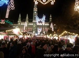 targul de Craciun de la Viena 2013 5