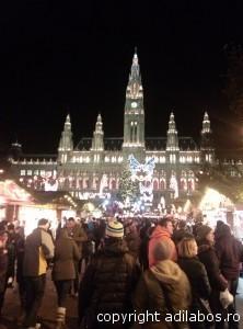 targul de Craciun de la Viena 2013 6