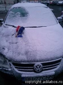 iarna deszapezire 23012014