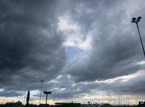 nori in furtuna