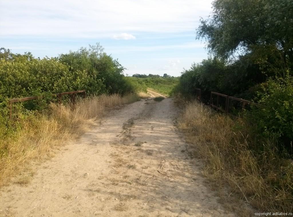 Podul Labosului1