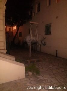 hipopotam suspendat în Nisa