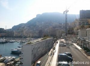 port Monte Carlo5