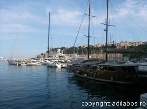 port Monte Carlo8
