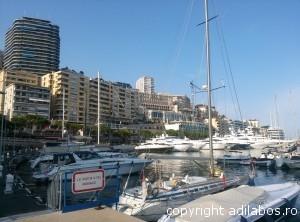 port Monte Carlo11