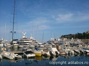 port Monte Carlo12
