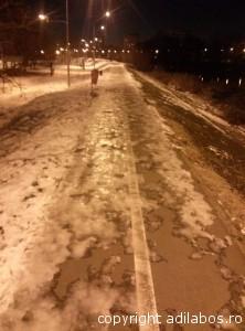 alergare Boboteaza Oradea (2)