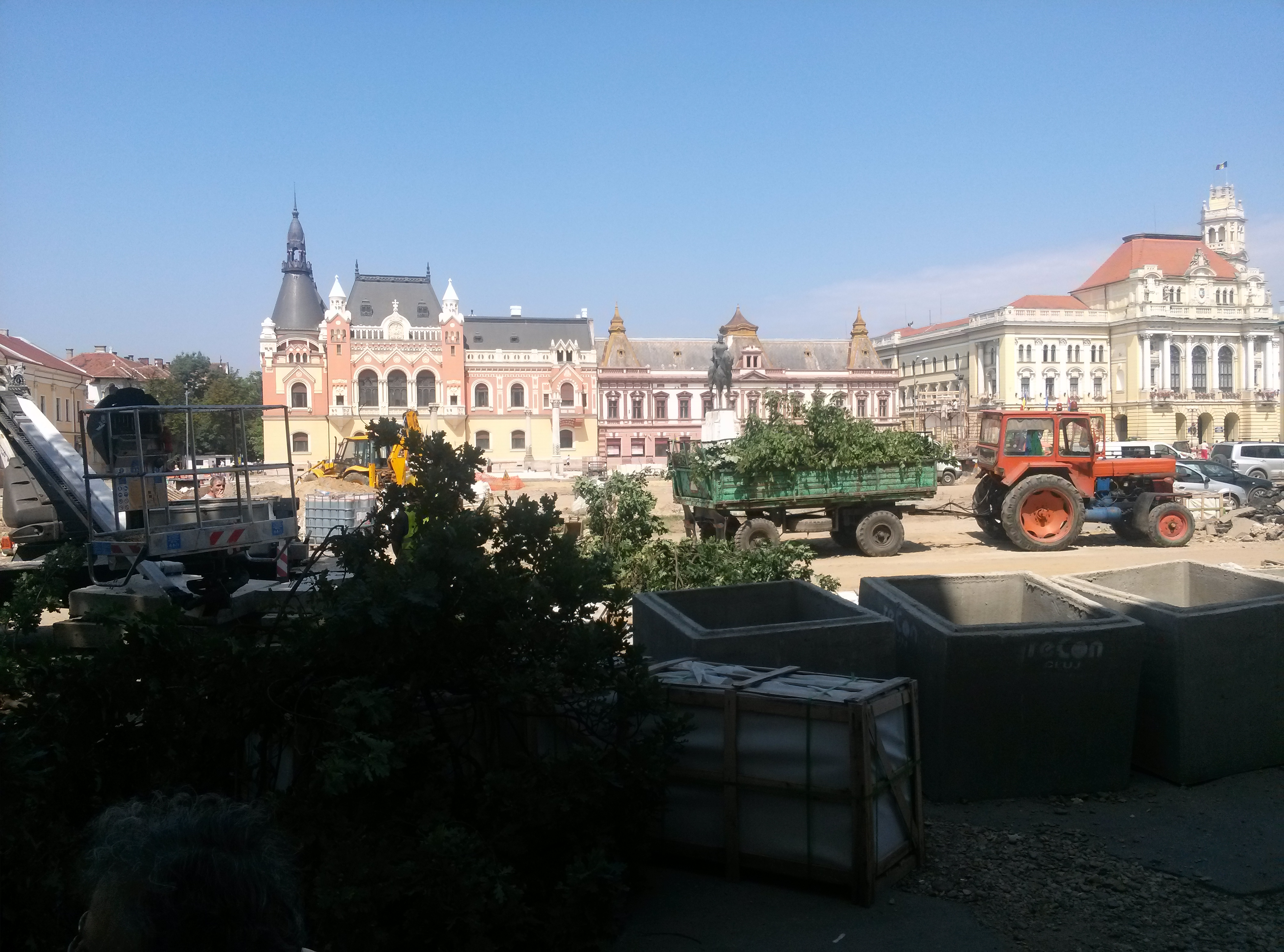 copaci taiati 30 iunie 2015 (9)