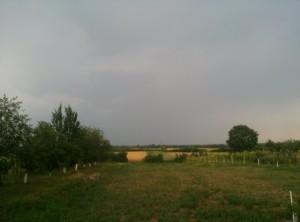 nori peste sat