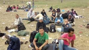 refugiați