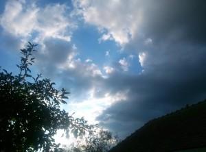 nori soare pom