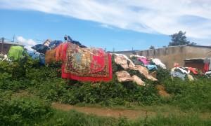 rufe la uscat Antananarivo Madagascar 1