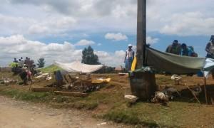 animale vandute la margine de drum Antananarivo Madagascar