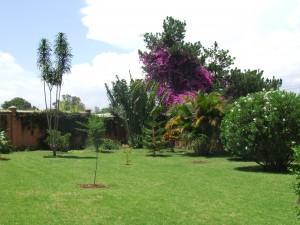 Gradina in Madagascar