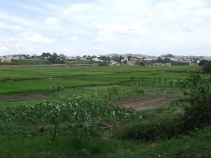 porumb orez Antananarivo
