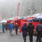 Serbările Zăpezii Vârtop 2016 (19)