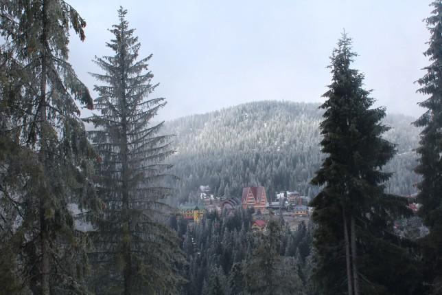 Serbările Zăpezii Vârtop 2016 (13)